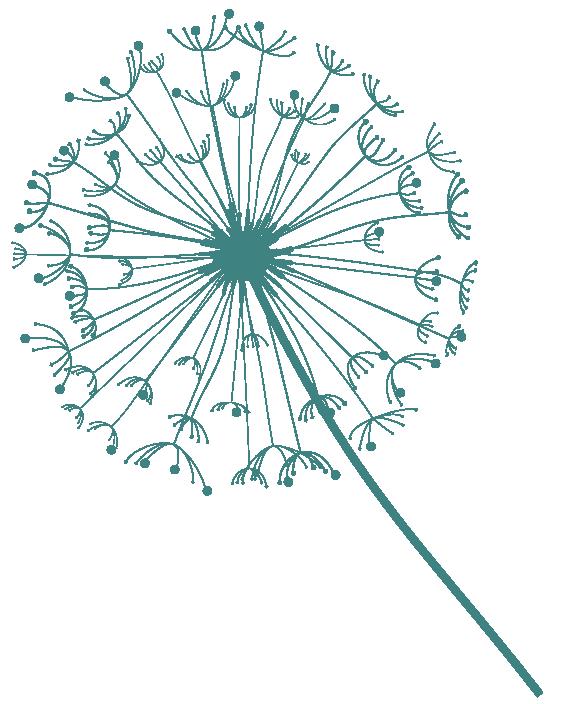 Web Dandelion Green